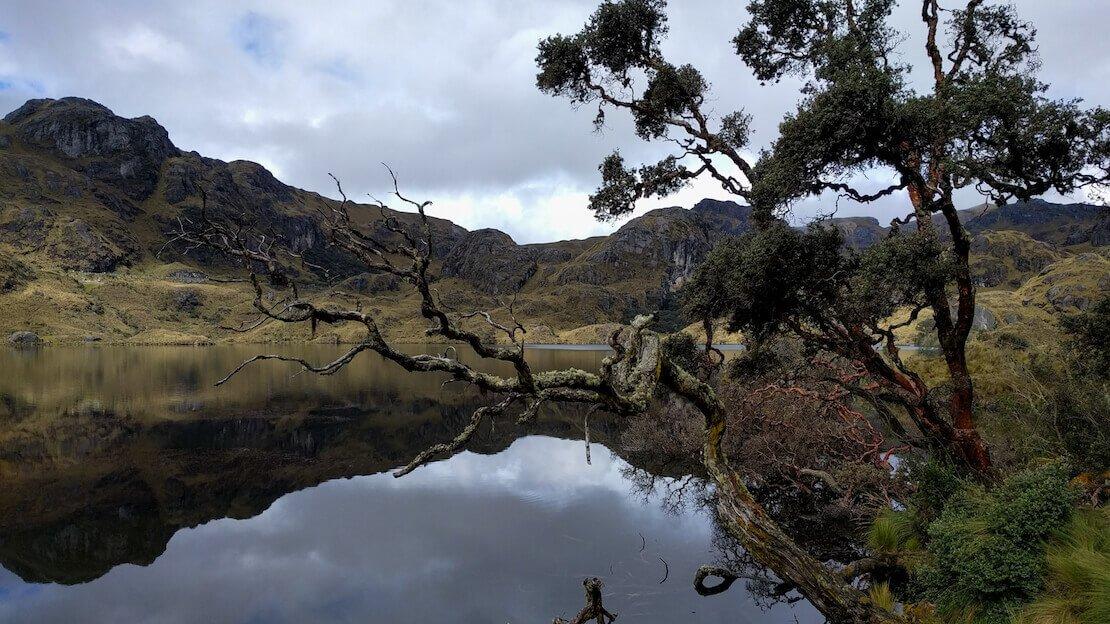 Trekking al parco nazionale la cajas vicino a Cuenca.