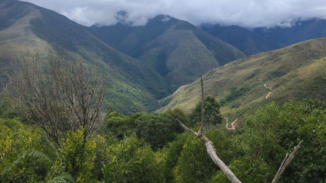 La foresta pluviale che circonda Coroico in Bolivia.