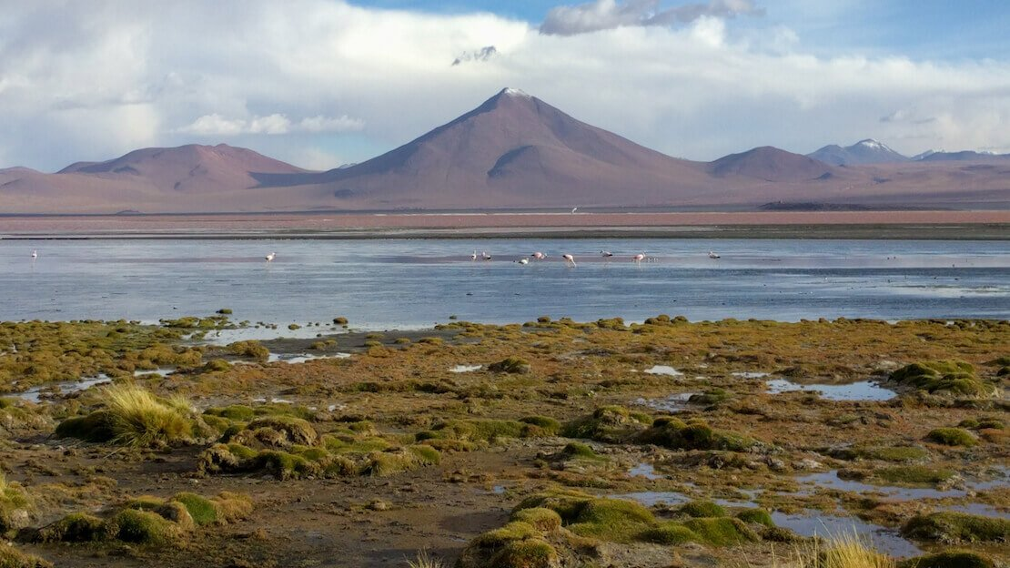 La Laguna colorada all'interno della Reserva Eduardo Abaroa